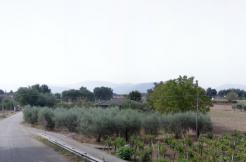 Terreno Castrocielo via Campanile